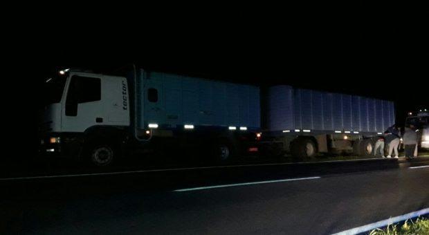 Camion participante del accidente – foto LTeN