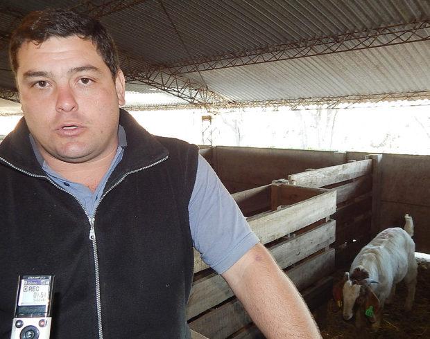 Carlos Greco compartio con El Regional Digital detalles de la importanción de la nueva sangre Boer