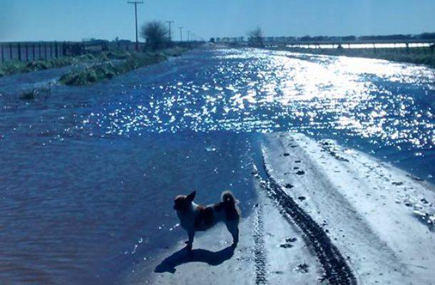 Camino rural en Zavalia bajo agua
