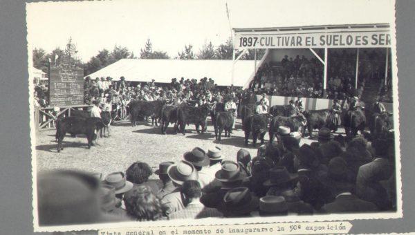 Inauguracion de 50 Exposición rural de Sociedad Rural de 9 de Julio- Foto Hector Iaconis