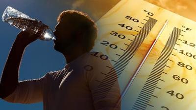 Altas temperaturas: Recomiendan prevención en las personas y en el manejo de animales