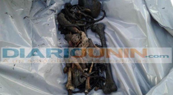 Huesos de humanos hallados a la margen de la laguna