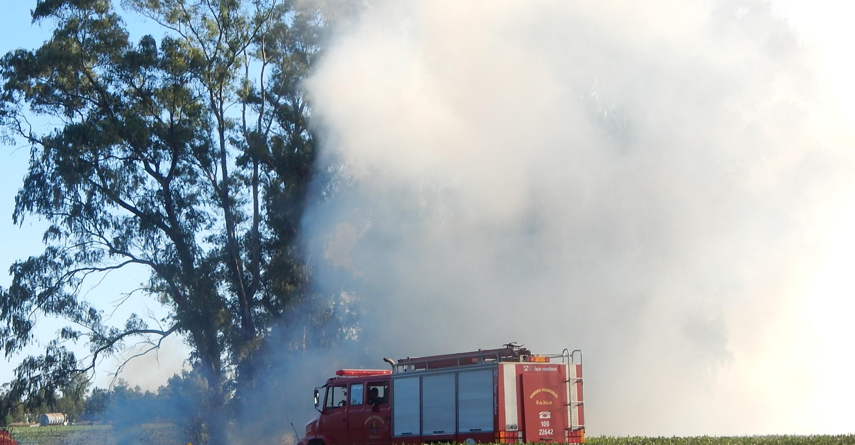 En 9 de Julio por causa de ciertas negligencias se quemaron  80 hectáreas durante el fin de semana