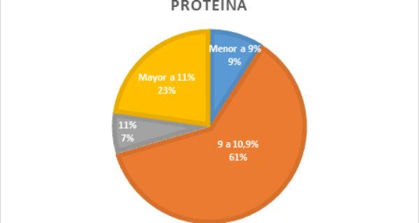 Proteina – grafico Lab Los Cardales