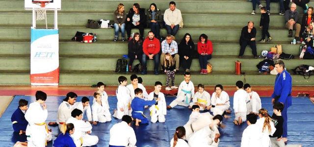 Una de las demostraciones de Judo por parte de chicos