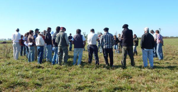 Productores rurales. Padres e hijos en una charla a campo sobre pasturas, recibiendo conocimiento