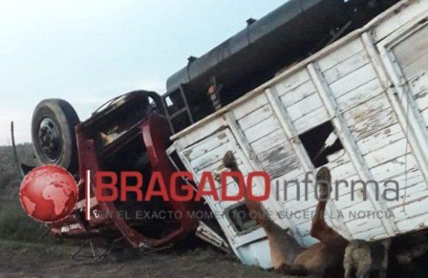 El camion con los equinos atrapados