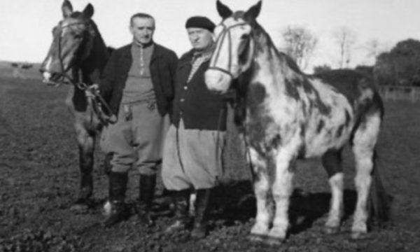 Emilio Solanet, Aimé Tschiffely junto a Gato Mancha
