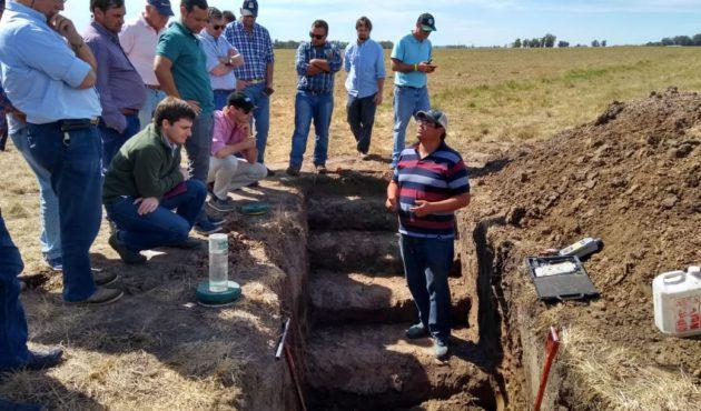 Analisis en una calicata de un campo CREA en 9 de Julio como parte de la JAT