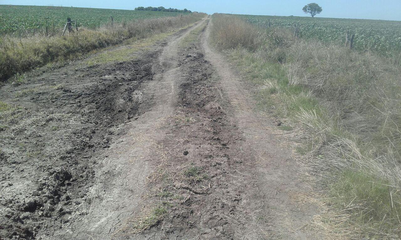 Caminos rurales: CARBAP lamenta que no se esta cumpliendo con el anuncio de reparar 4.000 kms en la provincia