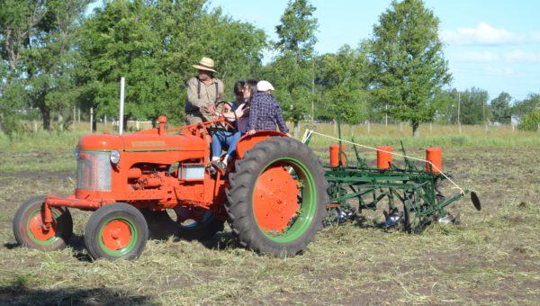 Chicos y grandes en un tractor Internacional y tirando una vieja sembradora