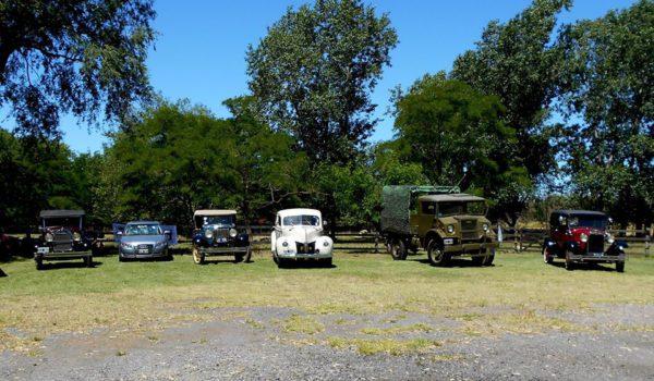 Exposicion de autos antiguos