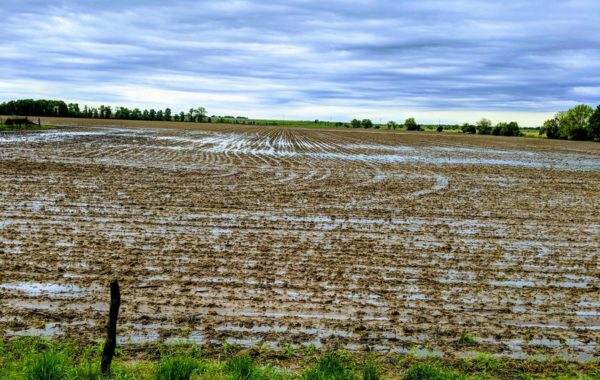 Las labores agricolas en Estados Unidos se ven retrasadas