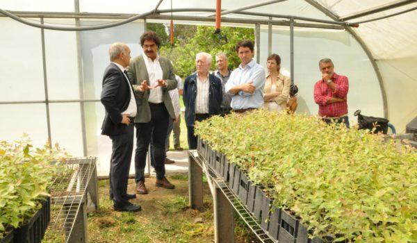 Sarquis y el vice gobernador Daniel Salvador en la Estacion Forestal del Ministerio de Agroindustria