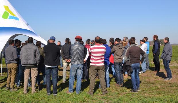 Productores y agronomos que se reunieron en el CTT