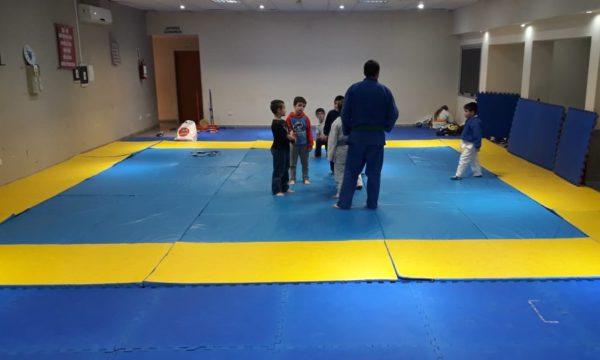 Tatami que se adquirio por parte del Judo de San Martin