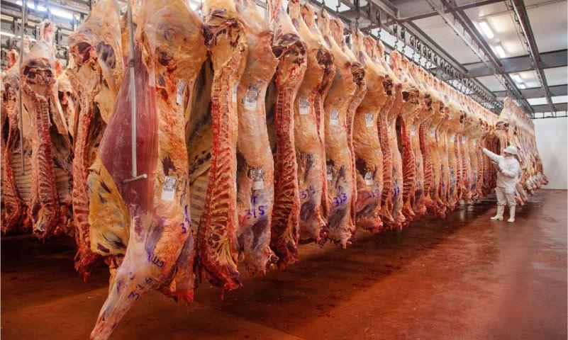 Operativo solidadridad: El Gobierno cambio el esquema de retenciones en carne, leche en polvo y otras economías regionales y aumento las mismas