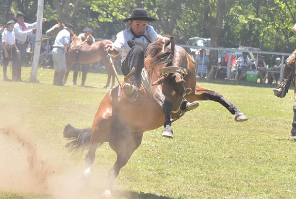 Navarro jineteando en la Expo Rural de 9 de Julio