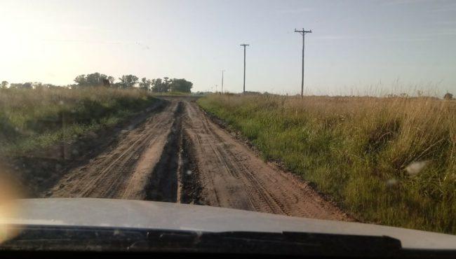 Camino rural El Pajarito