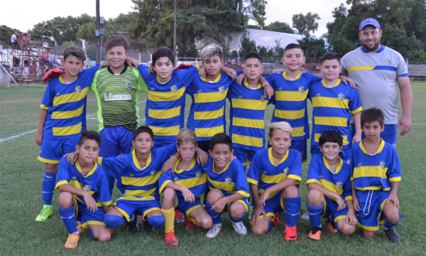 Once Tigres, cat 2008