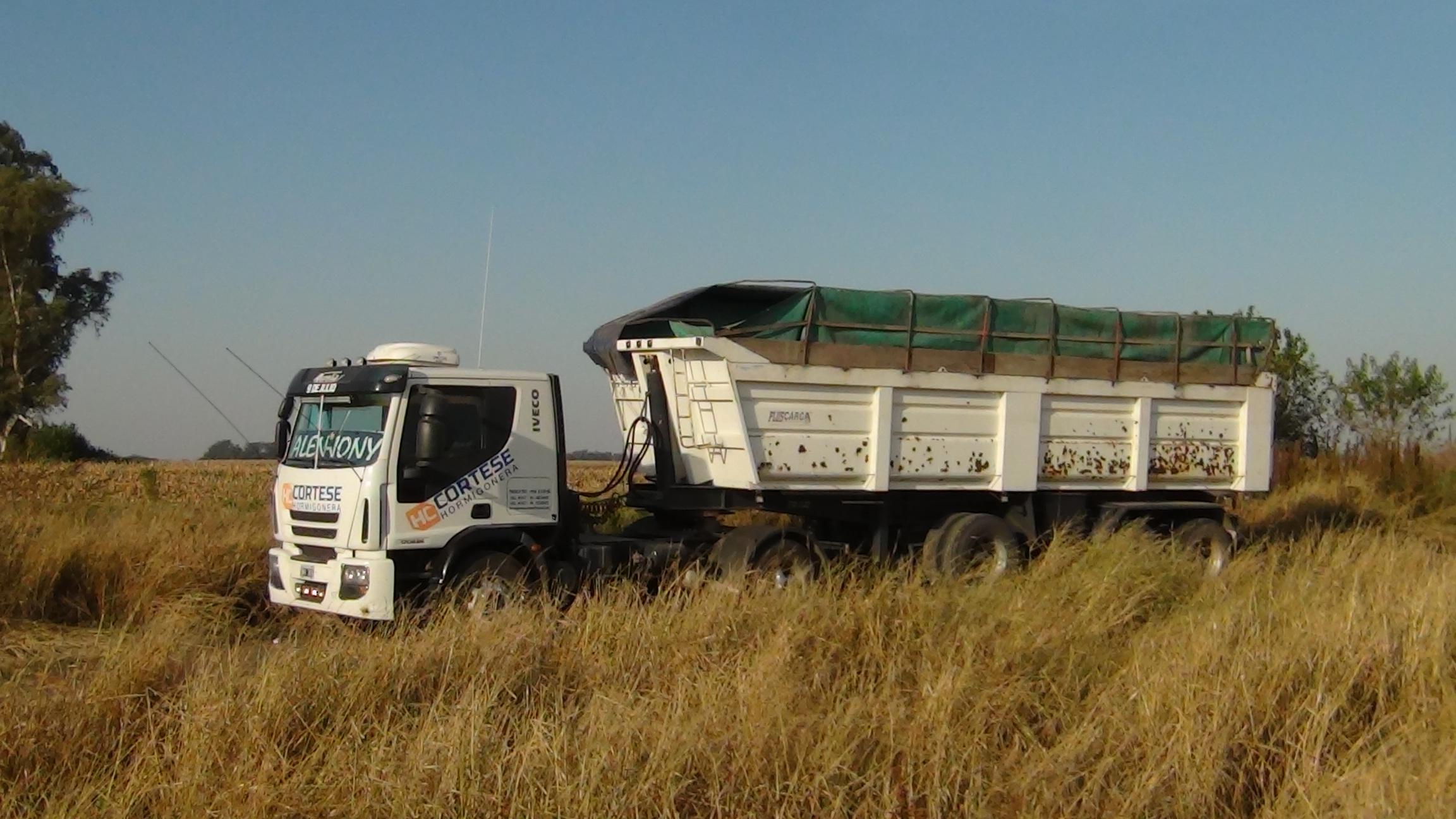 Cual es el protocolo que deben cumplir los transportistas de cargas