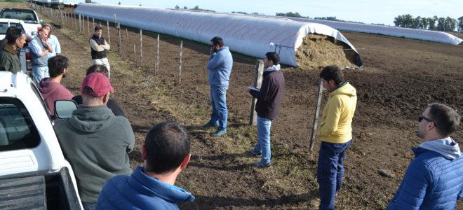 Con medidas de distanciamiento, la Regional Aapresid 9 de Julio-Casares visito un establecimiento ganadero