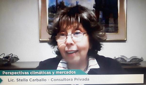 Lic Stella Carballo durante su disertación este miercoles