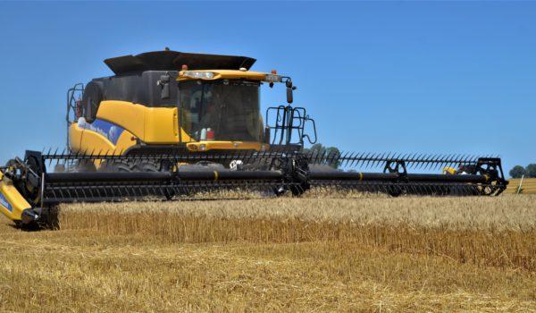 Cosecha de trigo en  9 de Julio en la ultima campaña